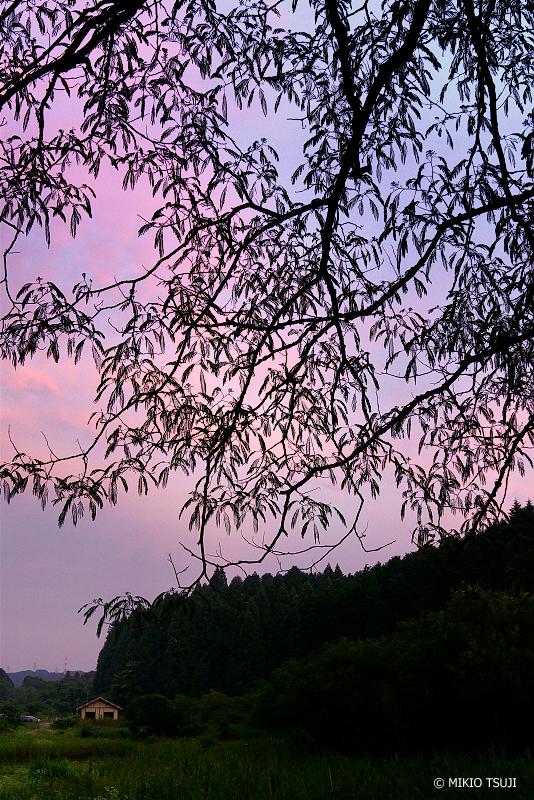 絶景探しの旅 - 絶景写真No.1362 里山の夕暮れ時 (東京都 あきる野市 横沢入里山保全地域)