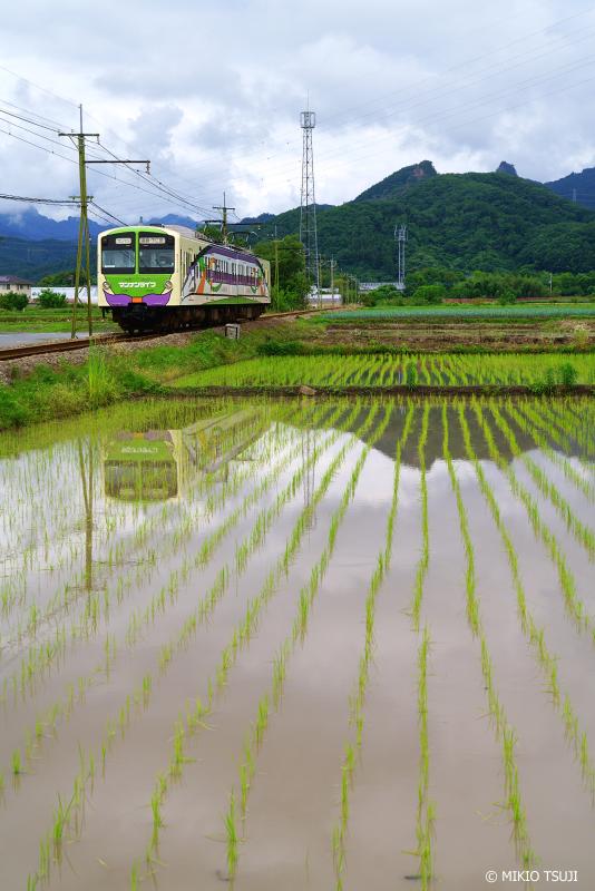 絶景探しの旅 - 絶景Photo No.1374 マンナンライフの蒟蒻畑列車 (上信電鉄/群馬県 富岡市)