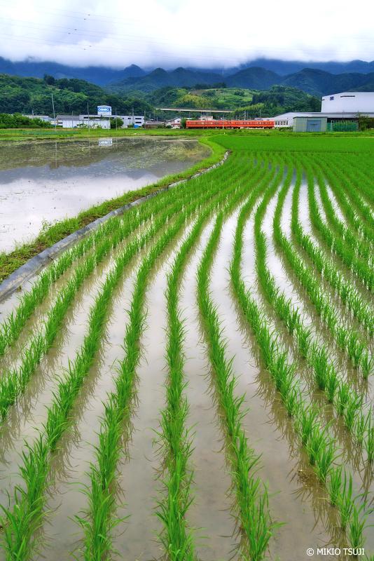 絶景探しの旅 - 絶景Photo No.1375 波形模様 (上信電鉄/群馬県 富岡市)