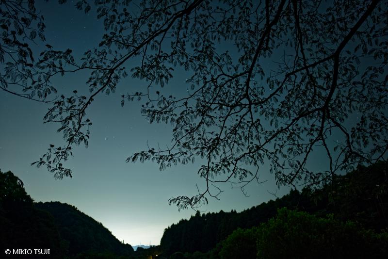 絶景探しの旅 - 絶景写真 No. 1411 里山の宵 (横沢入里山保全地域 東京都 あきる野市)