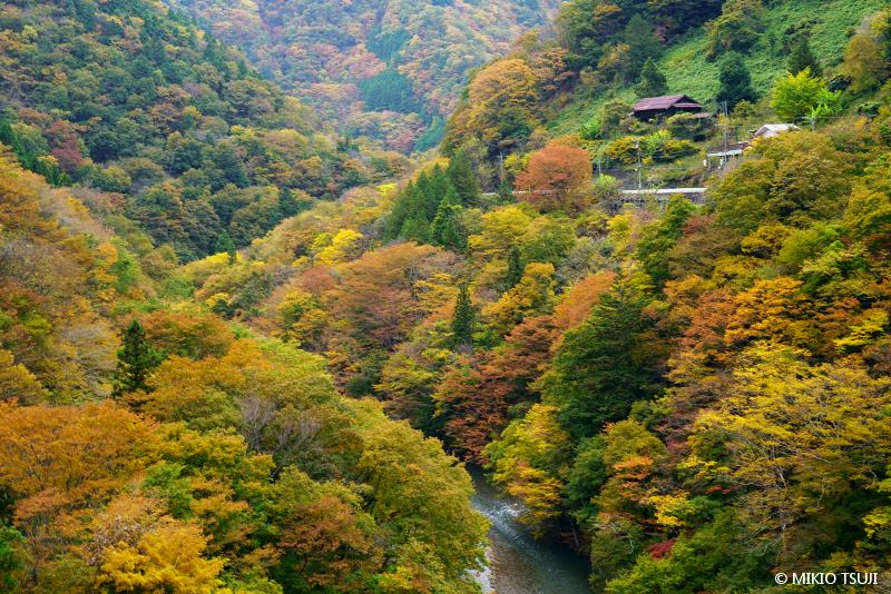 絶景探しの旅 - 絶景写真No.1490 丹波川の秋 (山梨県 丹波山村)
