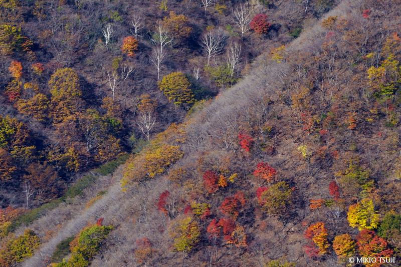 絶景探しの旅 - 絶景写真 No.1499 秋色のパレット (半月山/栃木県 日光市)