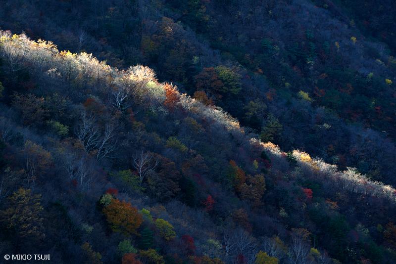 絶景探しの旅 - 絶景写真 No.1500 光のライン (半月山/栃木県 日光市)