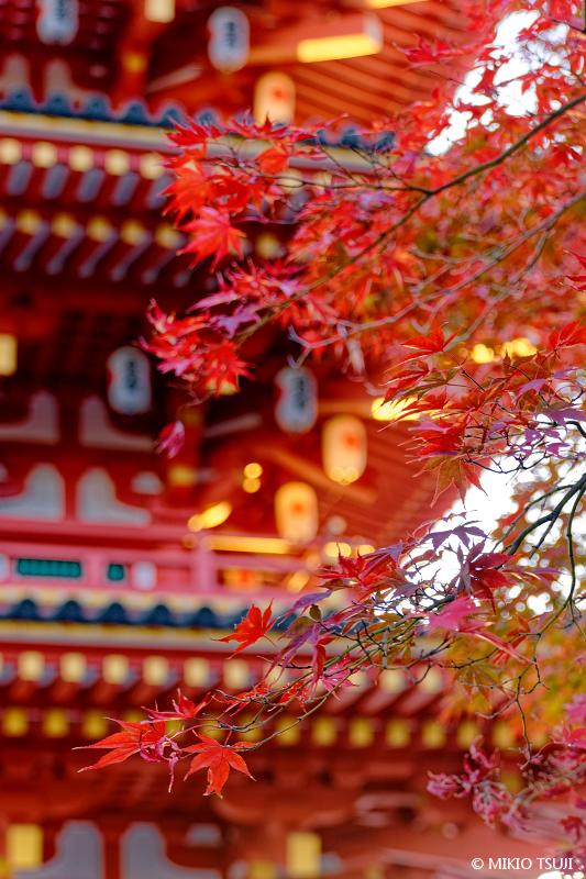 絶景探しの旅 - 絶景写真 No.1505 朝の光を受ける高幡不動尊 五重塔 (東京都 日野市)