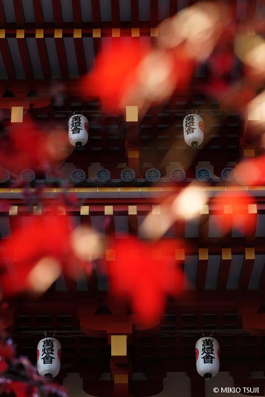 絶景探しの旅 - 絶景写真 No.1506 明暗 (高幡不動尊/東京都 日野市)
